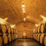 ダラットのワイナリー見学!?ラドフーズ・ワイン工場をレポートします!