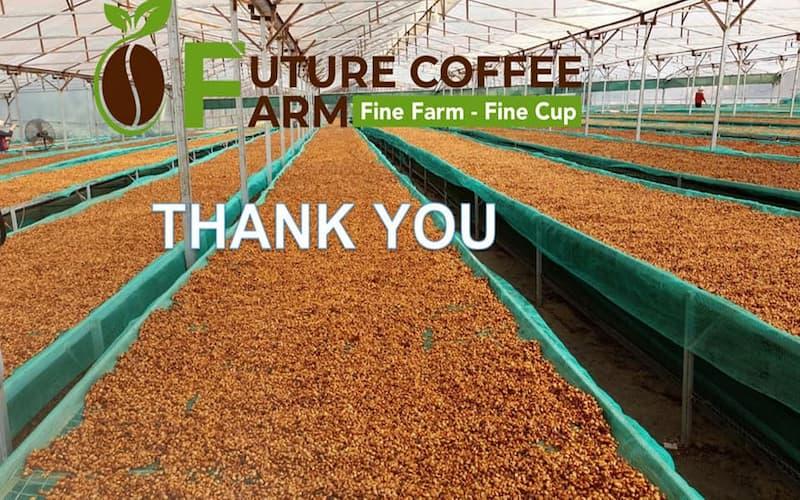 ベトナム コーヒー農家